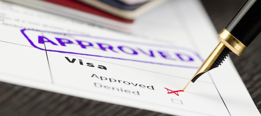 Visas: How many Types could be there?